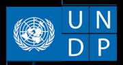 UNDP_Small